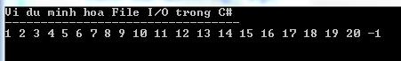 File I/O trong C#