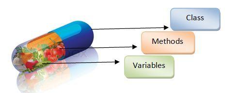 Lập trình hướng đối tượng oop là gì? image 1